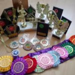 My dance trophies medals and rosettes over the years hellip